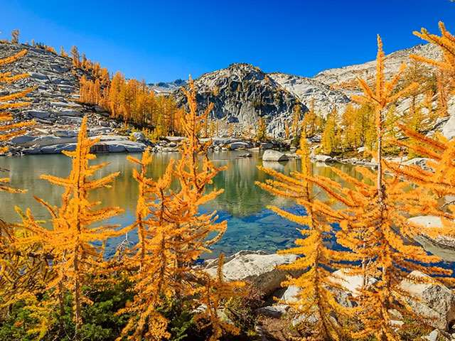 TheEnchantments-3